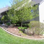 kalamazoo-residential-landscaping-yard-help