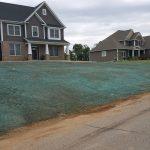 hydroseeded lawn kalamazoo
